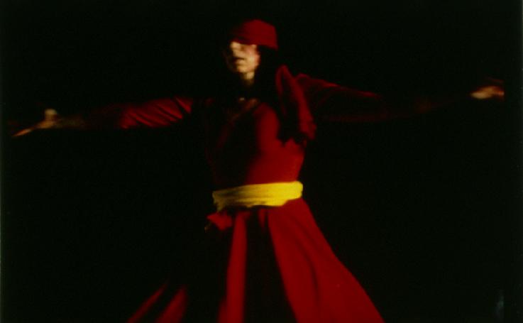 Die Eulenspieglerin (1985)